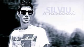 Silviu B. - A nimanui