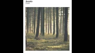 Havvks - Dust (2015)
