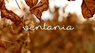 Ventania (Poemas ao vento) - Experimental short film