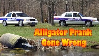 Remote Controlled Alligator Hidden Camera Prank 2014 width=