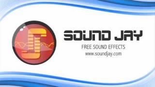 Censor Beep Sound Effect - SoundJay.com