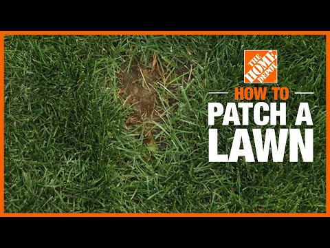 How to Patch a Lawn