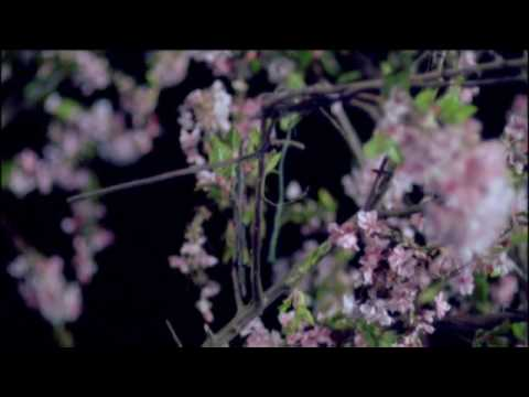 foals-this-orient-official-video-subpoprecords
