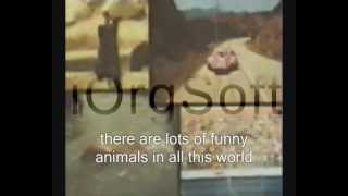 Pink Panther - The Pink Panther Theme Lyrics