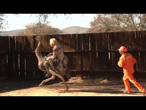 Tim Charody goes ostrich riding