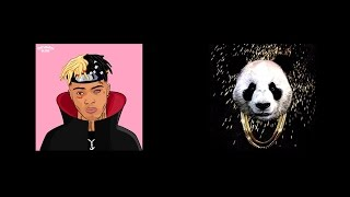 FIRE SONG BY DESIIGNER AND XXXTENTACION - Look at me Panda Mashup