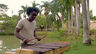 No Es Justo (Remix)  -J. Balvin, Zion & Lennox - Marimba de Chonta - Enrique Riascos