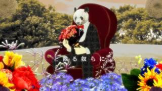 """【赤飯とYM】あれこれそれどれ Music Video  Sekihan & YM """"arekoresoredore"""""""