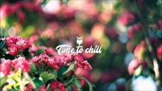 Sleepdealer - Sorry