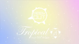 Douer feat. Briggie - Tropical