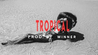 "Free Dancehall x Afrobeat Instrumental Riddim 2018 ""TROPICAL""prod By winner"