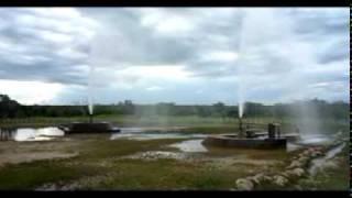 Poços Jorrantes no Piauí - Violeta