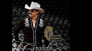 Gerardo Gameros - Dale Macizo - Caballo Dorado
