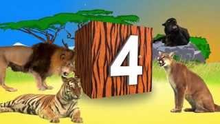 Contando en Español con Animales Reales (Real Animal Counting)