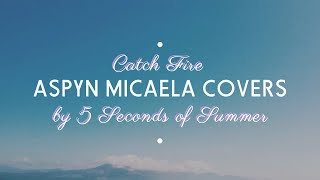 Catch Fire by 5 Seconds of Summer (Cover with Guitar)