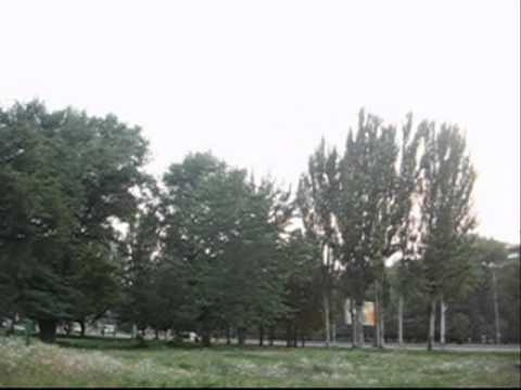 10 08 2010 Zaporizhzhya,Ukraine +40C