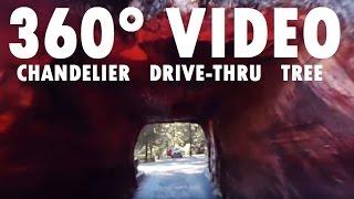 [360 Video] Chandelier Drive-Thru Tree