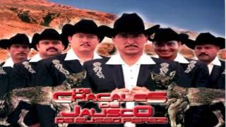 La Sigo Amando Los Chacales De Jalisco