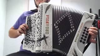 Concertina é porreira na concertina - Montagaitas