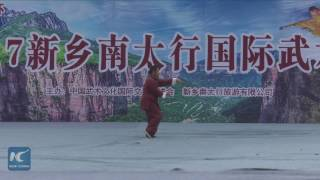 Chinese kung fu masters show their best skills in martial arts festival