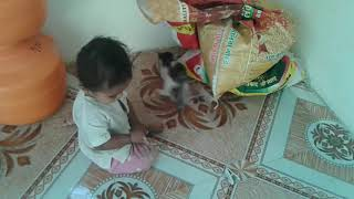 लहान बाळ विरूद्ध  मांजर कॉमेडी एकदा बघाच