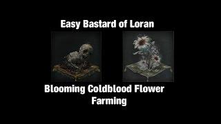 Bloodborne, Bastard of Loran,  Blooming Coldblood Flower easy farming