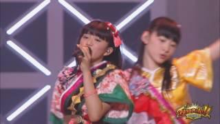 【俺の藤井2016・BD】私立恵比寿中学♪ハイタテキ!【タイナマイト】