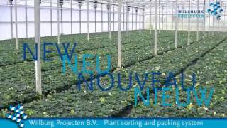 NEW Plant sorting and packing system