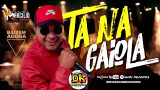 DJ MARCILIO DJ JUNINHO - TA NA GAIOLA