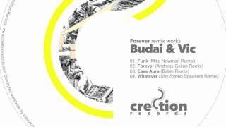 Budai & Vic - Funk (Blabo remix) preview