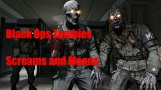 Call of Duty Zombies Sound Effects