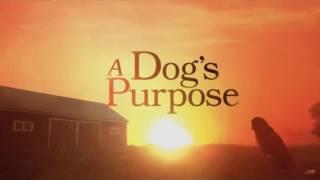 A Dog's Purpose 2017 - Soundtrack ( fan made )