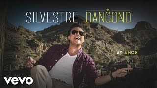 Silvestre Dangond - Ay Amor (Cover Audio)
