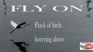 FLY ON by Coldplay (VIDEOLYRICS)