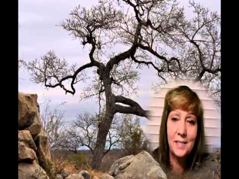 Birds, Trees and Animals of Krugar Park Safari South Africa [Boomer and Senior Travel TV #56]