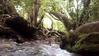 Na Natureza Selvagem 2