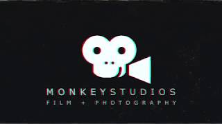 intro monkey