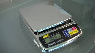 GS Washdown Scale Overview