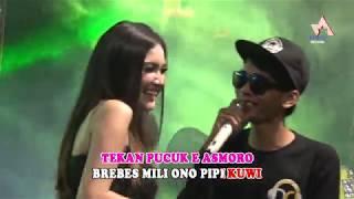 Pucuke Asmoro - Nella Kharisma, Danang