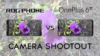 Asus Rog Phone vs OnePlus 6T: Camera Shootout