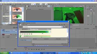 How To Get Night Vision Effect In Sony Vegas pro ! ft. MY DOG