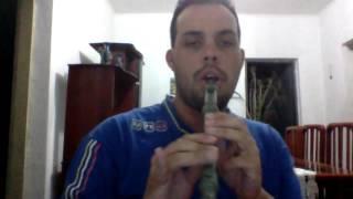 Dhebas - Detalhes, Roberto Carlos [flauta doce]