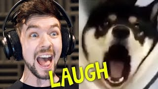 CHILD GETS SCARRED FOR LIFE   Jacksepticeye's Funniest Home Videos #4 width=