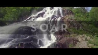 Meredith Andrews - Soar [Official Lyric Video]