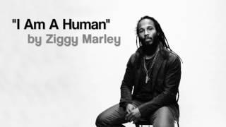 bob Marley :  i am a human