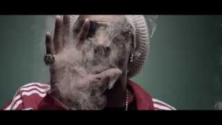 Snoop Lion   Smoke The Weed ft  Collie Buddz Music Video with Lyrics( Official Music Video HD)