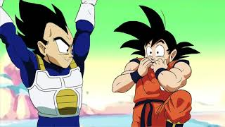 Dragonball Z: Did We Just Become Best Friends