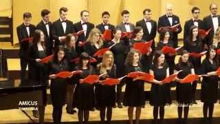 AMiCUS Timisoara - CRESTINI DIN TOATA ZAREA / Leonhard Schroeter