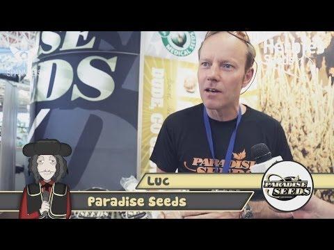 Paradise Seeds @ Spannabis 2014 Barcelona
