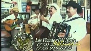 LOS PICUDOS DEL NORTE 1